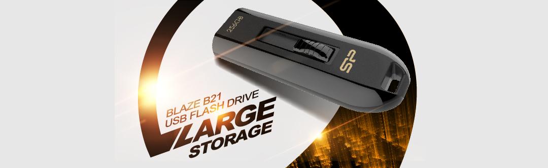 Blaze B21 Blazing USB 3.2 (Gen 1) 256GB High capacity