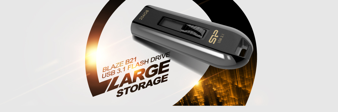 Blaze B21 Blazing USB 3.1 (Gen 1) 256GB High capacity