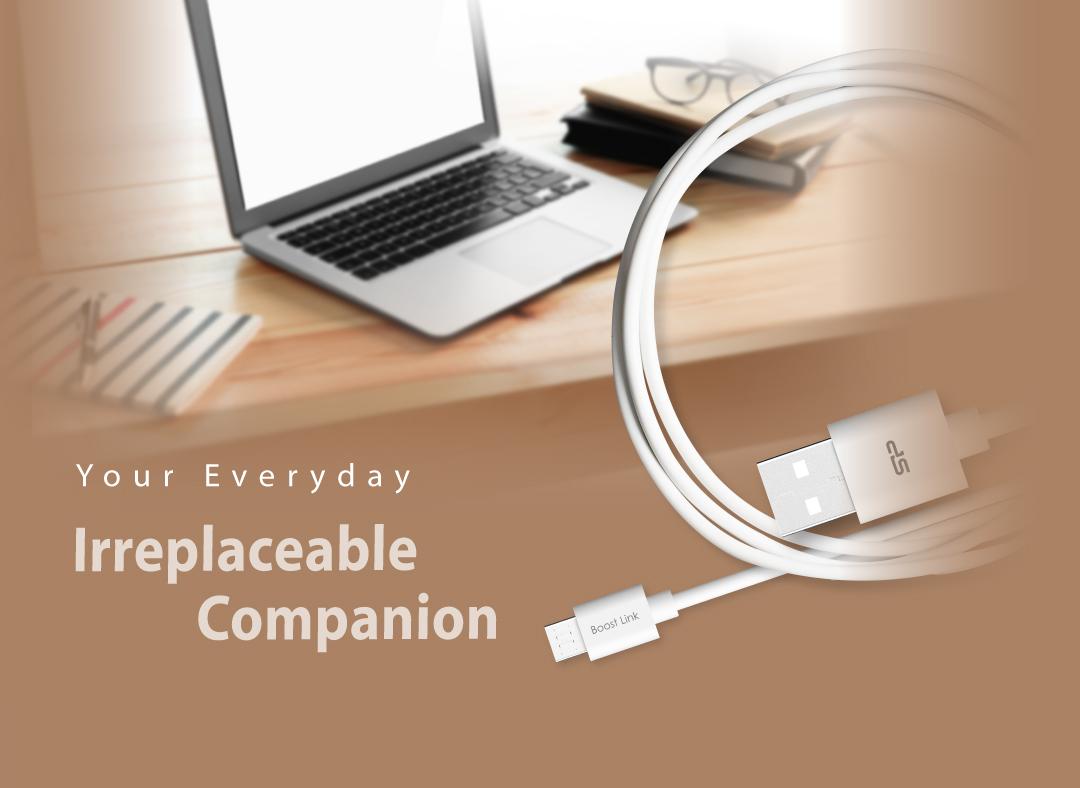 Boost Link PVC LK10AB
