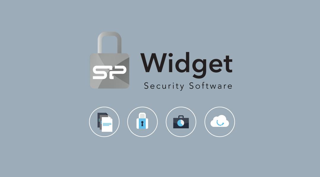 Blaze B02 SP Widget for Easy Data Management